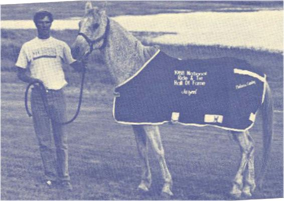 Image of Jazeel, a horse in the Hall of Fame.