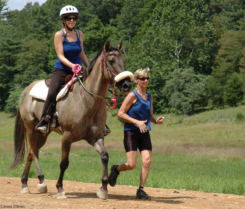 Image of a rider and runner.