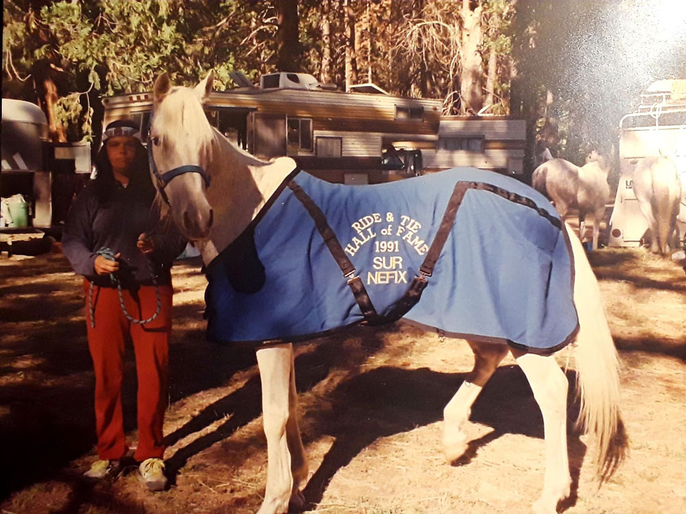 Photo of 1991 Ride & Tie Hall of Fame horse Sur Nefix