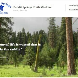Bandit Springs Endurance Ride and Ride & Tie Logo